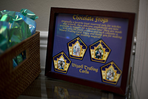 Chocolate Frog Sign