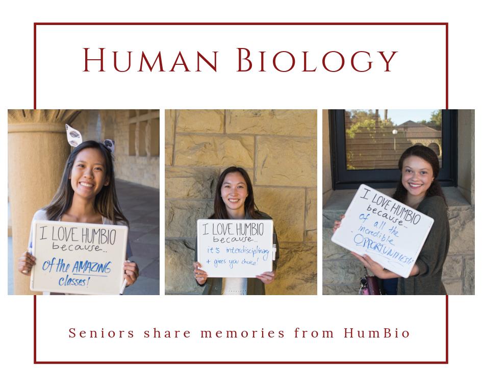 Seniors share memories about HumBio