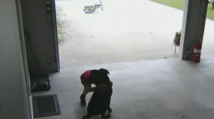 WATCH: Boy Caught Sneaking into Neighbor's Garage to Cuddle Their Dog .