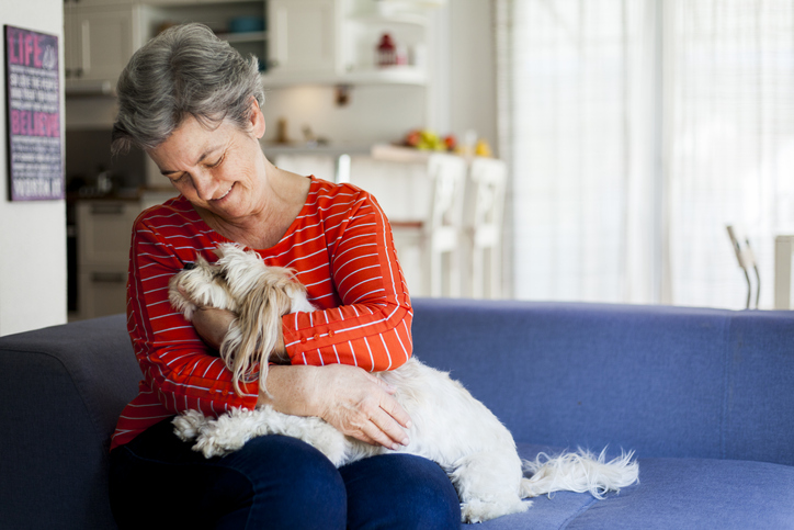 healing power of pets blood pressure iStock-1044480050