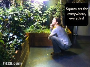 Squats are for everywhere, every day! Fit2B.com
