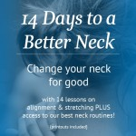 14 Days to a Better Neck fit2b.com