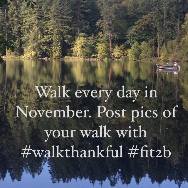 Join the November Walking Challenge with Beth of Fit2B! Click the link for group info!