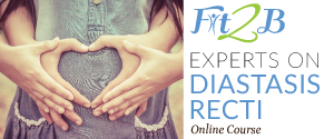 Experts in Diastasis Recti - ecourse on fit2b.com