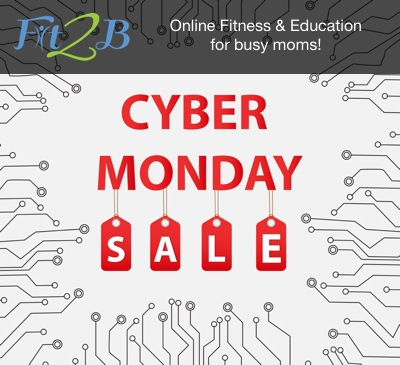 Cyber Monday 2016 - Tummy Safe Fitness & Education for Busy Moms!