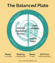 Balanced-Plate_school_full