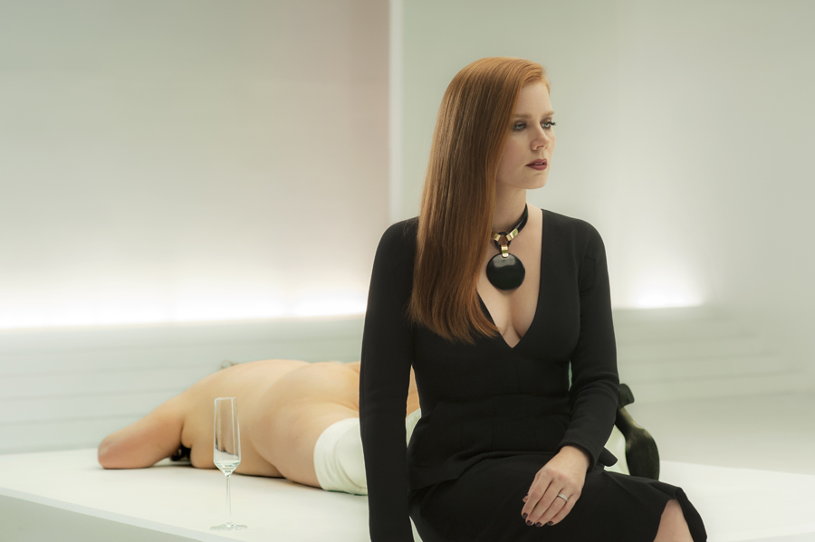 Nocturnal Animals Rotten Tomatoes Movie And Tv News