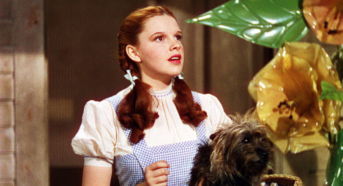 Judy Garland in The Wizard of Oz (Everett Collection)