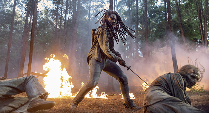 Danai Gurira as Michonne; group - The Walking Dead _ Season 10 - Photo Credit: Jackson Lee Davis/AMC