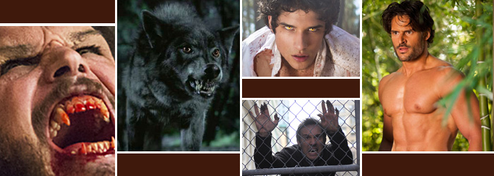 Werewolf Tv Shows Ranked By Tomatometer Rotten Tomatoes Movie And Tv News
