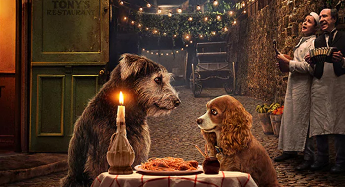 Lady and the Tramp keyart (Disney+)