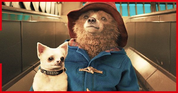 Paddington 3 Is Officially in the Works, and More Movie News