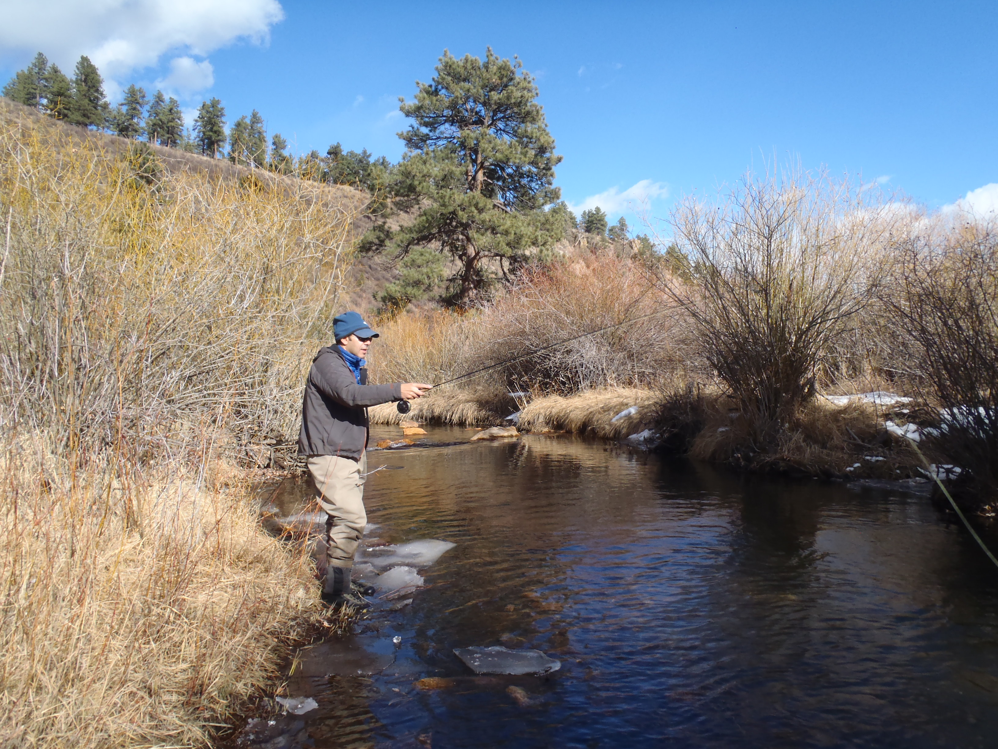 Colorado fly fishing reports lincoln hills trip report for Bear creek fishing