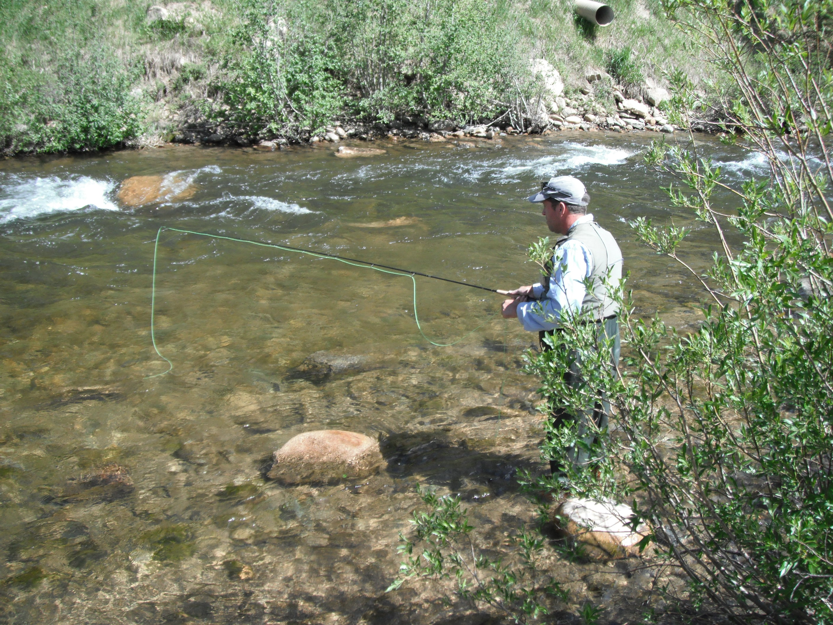 Colorado fly fishing reports guided fishing trip report for Colorado river fishing report