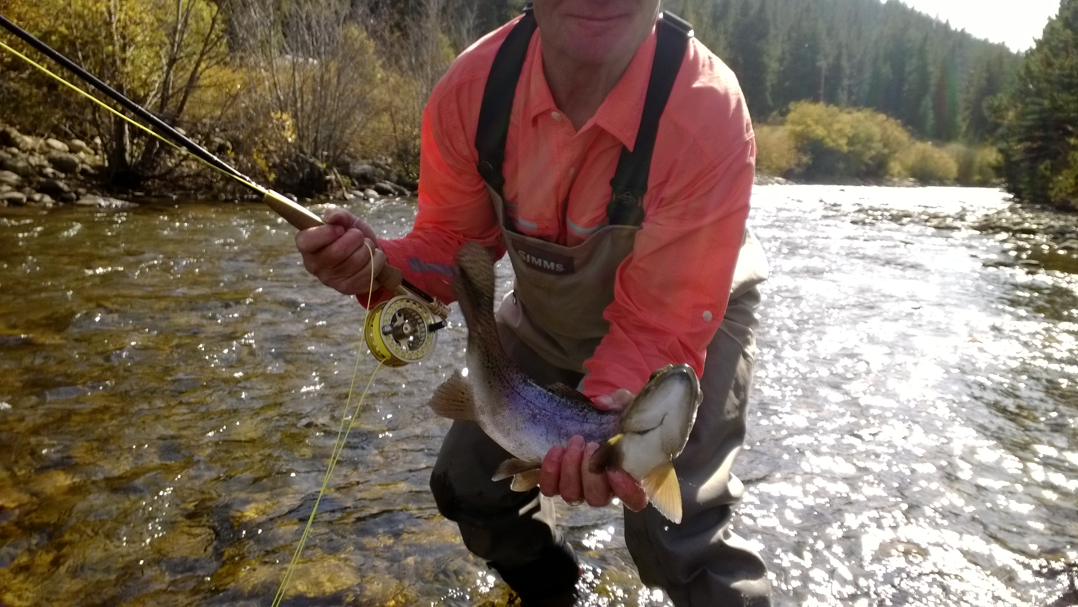 Colorado fly fishing reports lincoln hills trip report for Boulder creek fishing