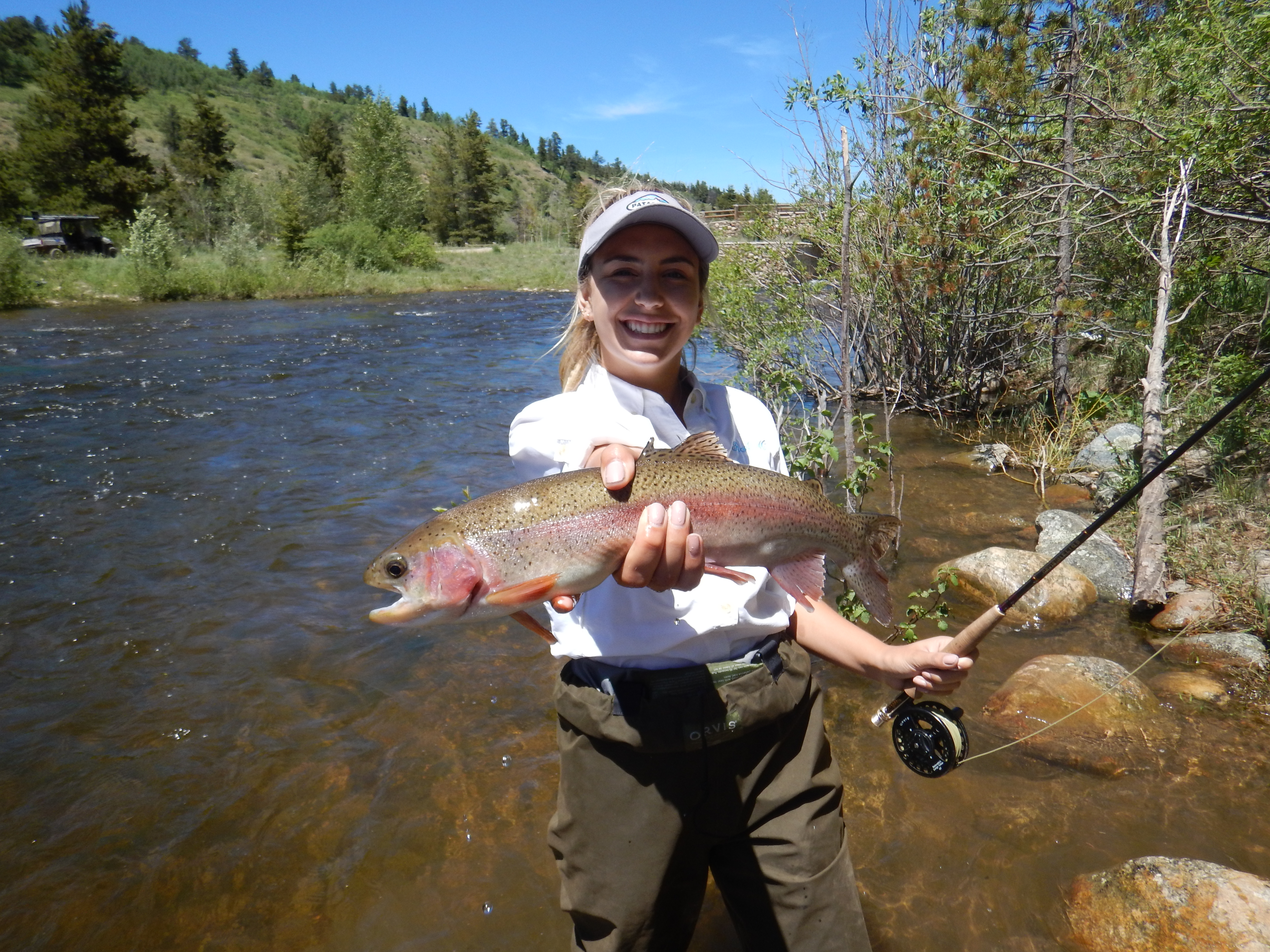 Download for Colorado fly fishing reports