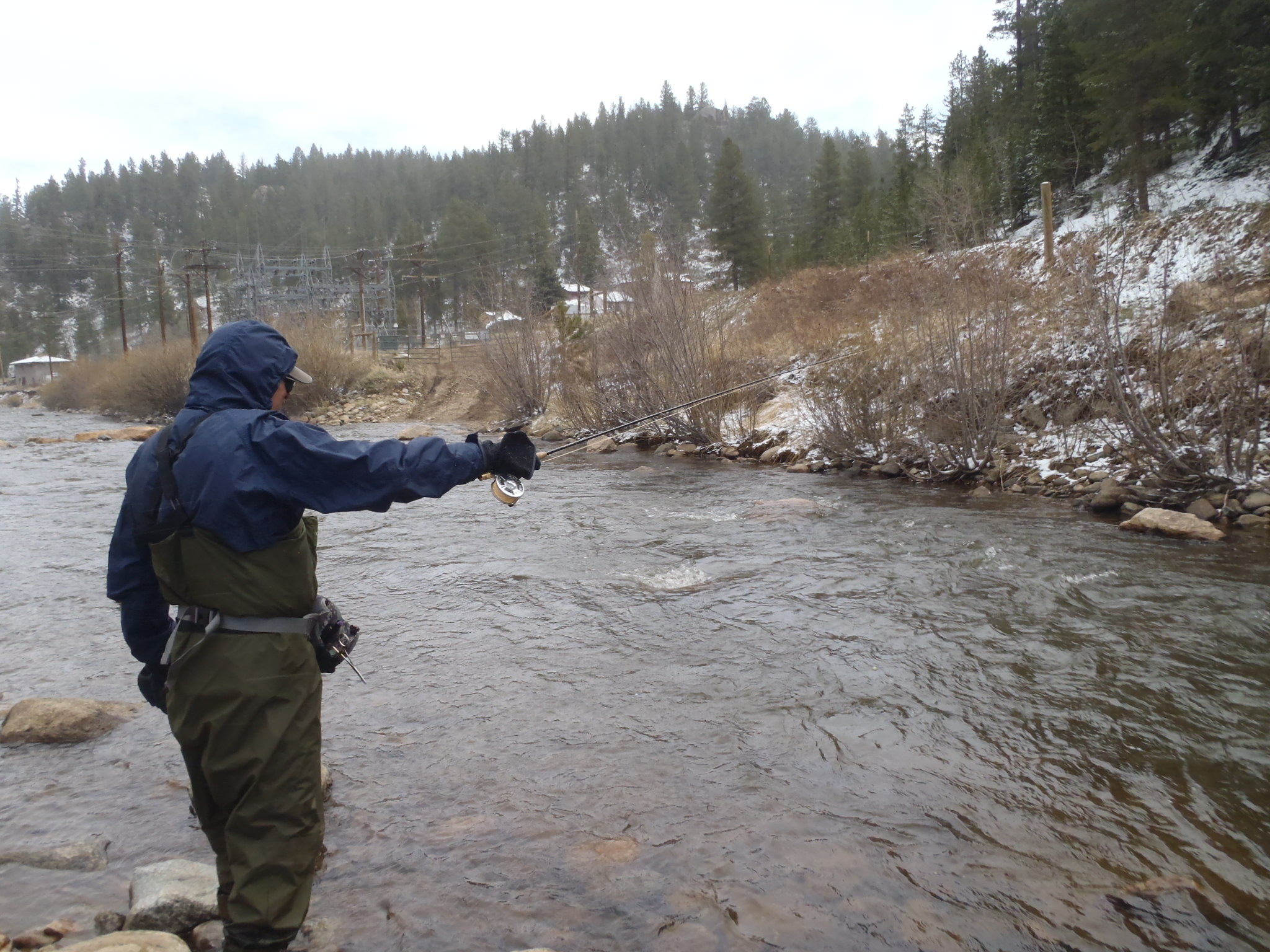 Download for Colorado river fishing report