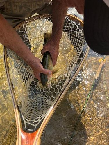 Lincoln Hills Fishing  (image 73)