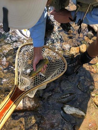 Lincoln Hills Fishing  (image 76)