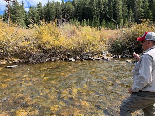 Espy Ranch Guided Fishing Trip  (image 3)