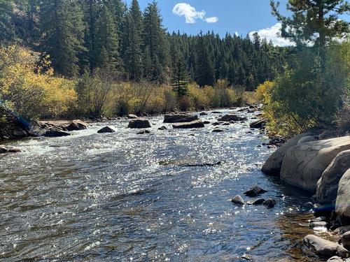 Espy Ranch Guided Fishing Trip  (image 4)