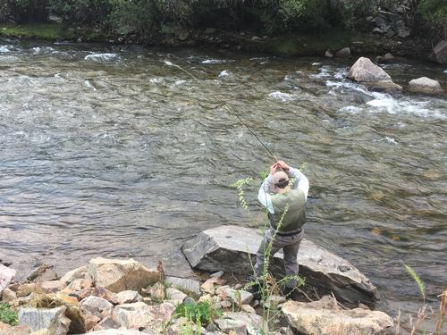 Colorado trout fisher report clear creek 08 02 2017 for Clear creek fishing report