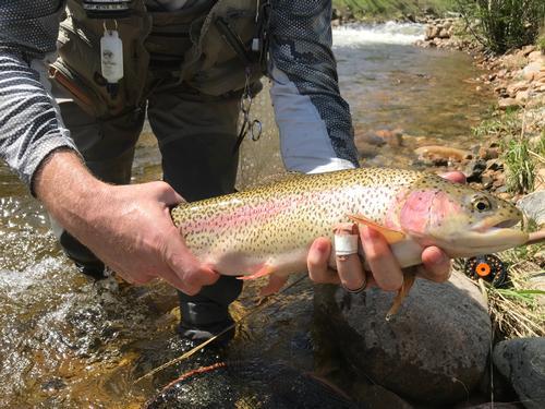 Lincoln Hills Fishing  (image 45)