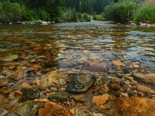 Boulder River Ranch Lincoln Hills Trip  (image 40)