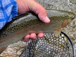 Lincoln Hills Fishing  (image 62)