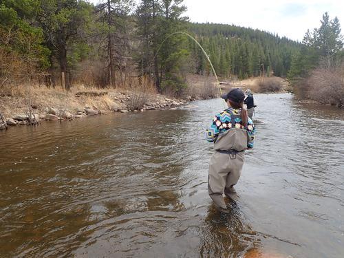 Boulder River Ranch Lincoln Hills Trip  (image 16)