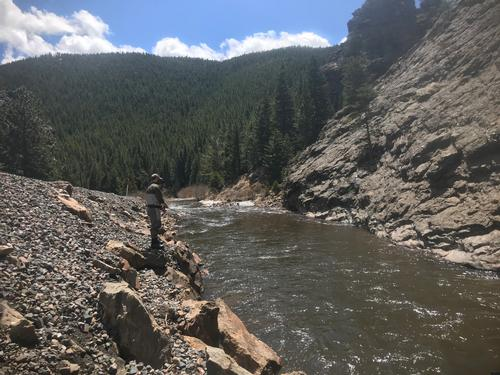 Deadwood Placer Guided Fishing Trip  (image 5)