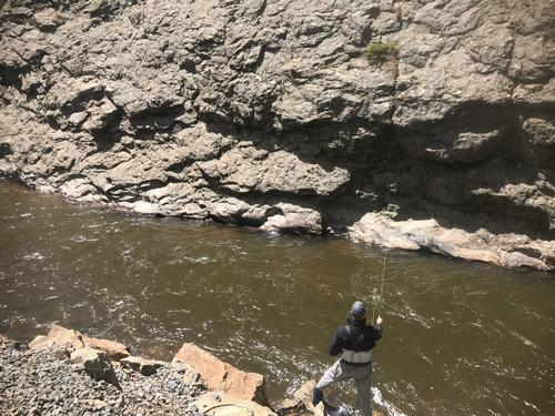 Deadwood Placer Guided Fishing Trip  (image 6)