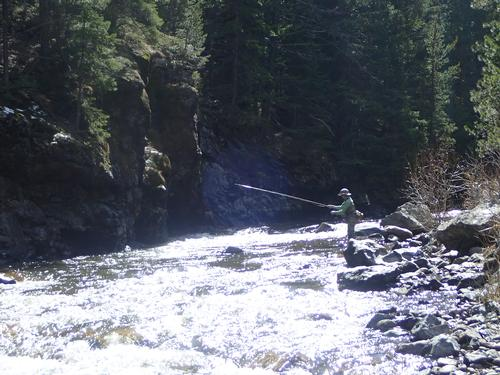 Freese Placer Guided Fishing Trip  (image 21)