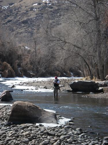 Clear creek fishing image 7 for Colorado fly fishing report