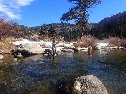 11 Mile Canyon Fishing Image 13