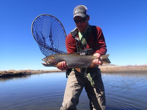 Dream stream fishing image 18 for Dream stream fishing report