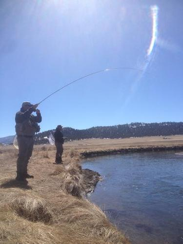 Dream stream fishing image 2 for Dream stream fishing report