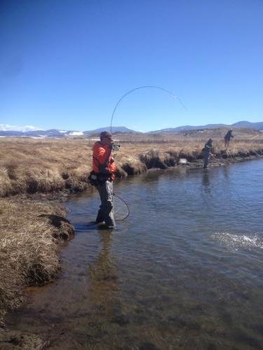 Dream stream fishing image 4 for Dream stream fishing report