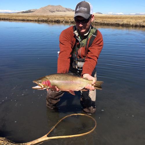 Dream stream fishing image 20 for Dream stream fishing report