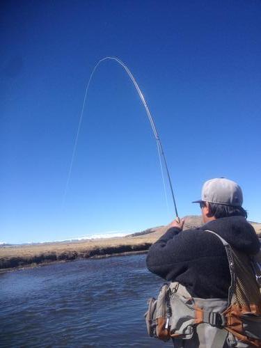 Dream stream fishing image 9 for Dream stream fishing report