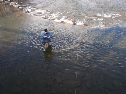 Blue river below dillon fishing image 20 for Colorado fly fishing report