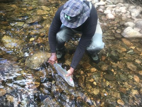 Lincoln Hills Fishing  (image 33)