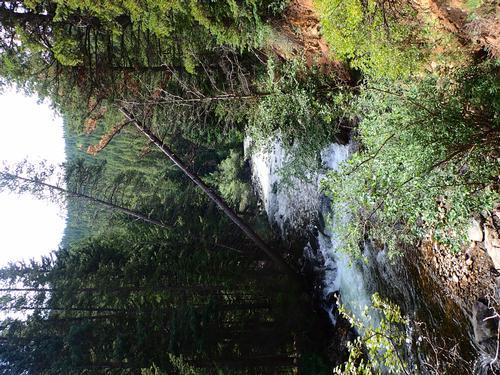 Lincoln Hills Fishing  (image 46)