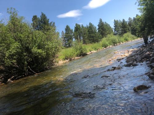 Lincoln Hills Fishing  (image 30)