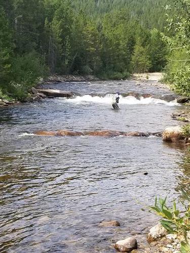 Lincoln Hills Fishing  (image 24)