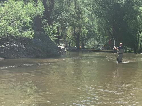 Bear Creek Colorado Trout Fishing