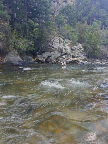 Clear Creek Colorado Trout Fishing