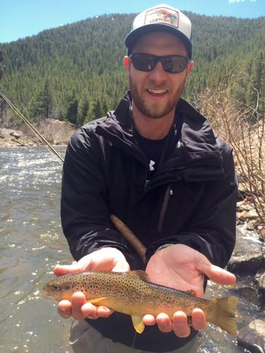 South Boulder Creek Colorado Trout Fishing
