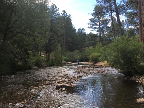 Bear Creek Colorado Trout Fishing