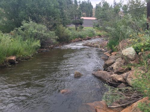 Colorado trout fishing fly fishing reports guides for Bear creek fishing